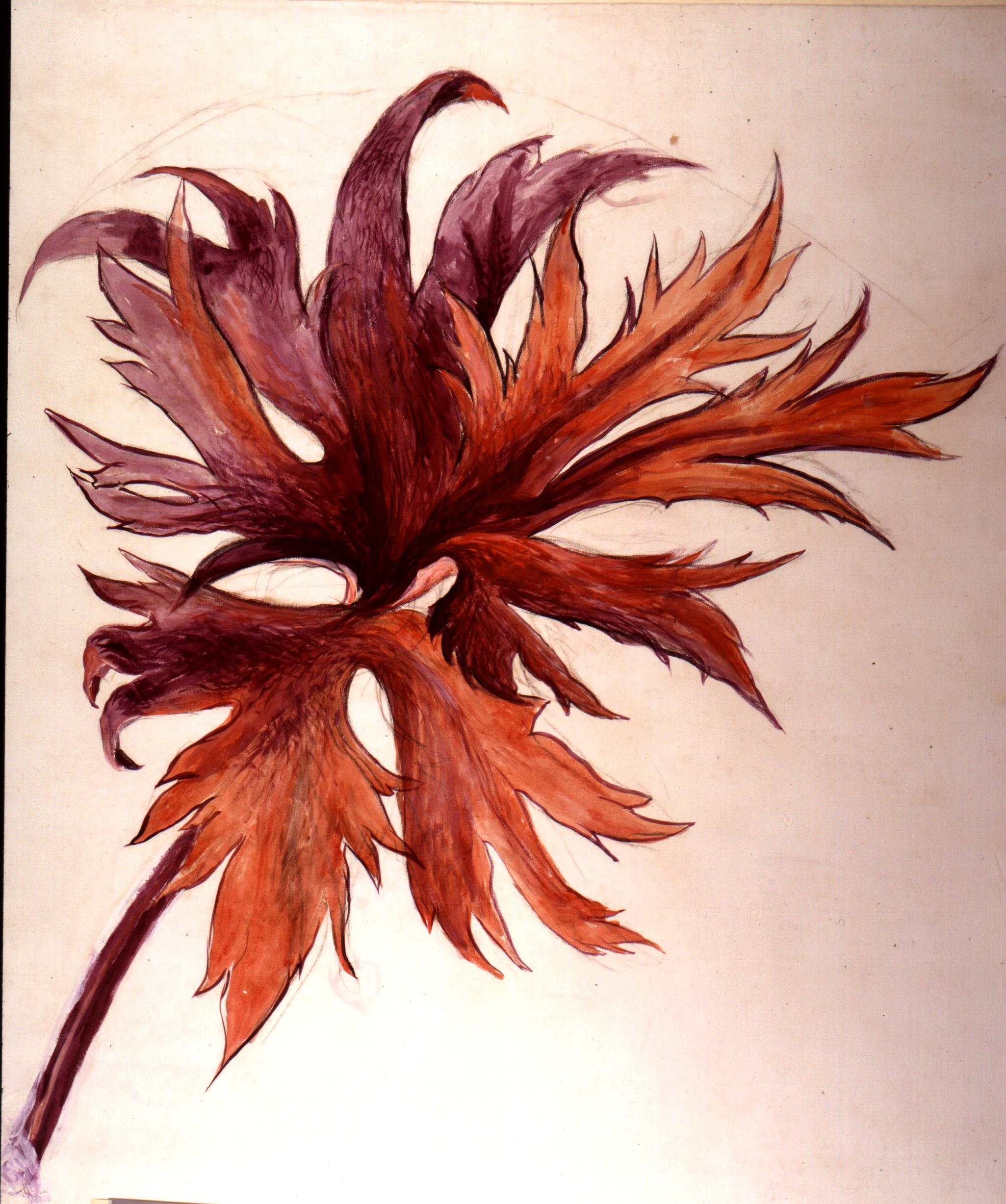 John Ruskin, Lecture Diagram: orange and purple leafspray, RF473 © Ruskin Foundation