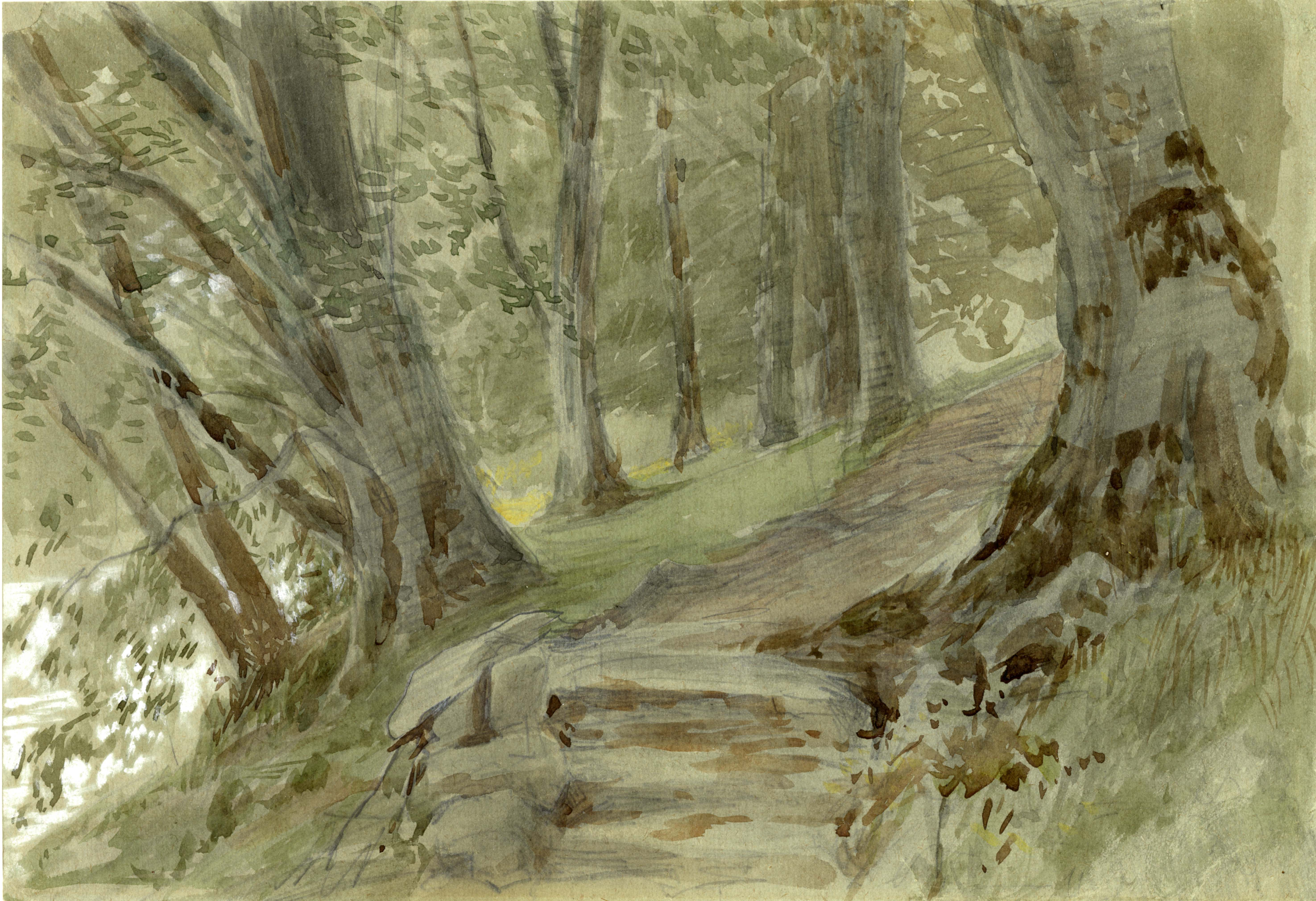 John Ruskin, Path at Brantwood, 1870s, RF1171 &copy; Ruskin Foundation
