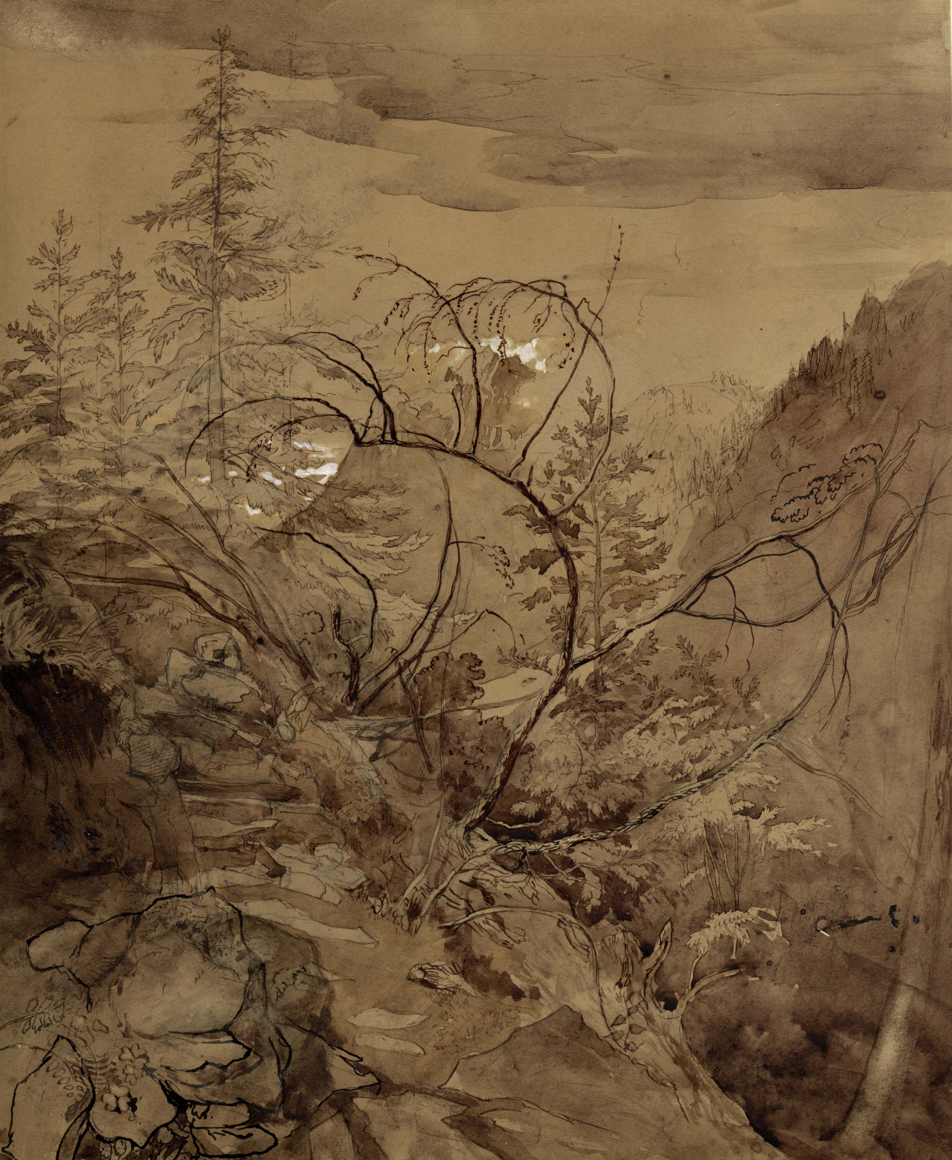 John Ruskin, Trees and Rocks c.1845, RF1566 © Ruskin Foundation
