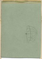 John Ruskin, Flower Studies - Buds and Flowers - Verso. RF1262 © Ruskin Foundation