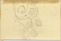 John Ruskin, Flower Study with elaborate drawing of Sun with Human Face. Verso. RF1268 © Ruskin Foundation